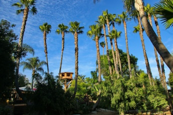 view of treehouse